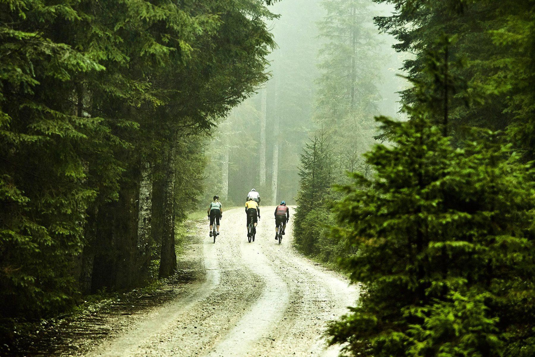gravel kolesa trek slovenija